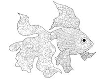 Goldfish Coloring book vector for adults Stock Photo
