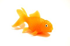 Goldfish d'isolement sur le blanc Photo stock