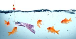 Goldfish in danger - concept deception. Goldfish in danger - euro as bait - concept deceptionn Stock Image