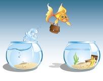 Goldfish di affari Fotografia Stock
