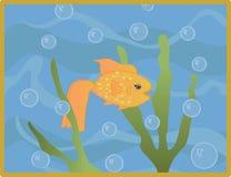 Goldfish en agua Imagenes de archivo