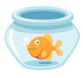Goldfish en un tazón de fuente Imagenes de archivo