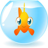 Goldfish face. Facing viewer inside a fish bowl,  cartoon illustration Royalty Free Stock Image