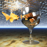 Goldfish Glass Stock Photo