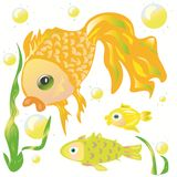 Goldfish and her friends Royalty Free Stock Photo