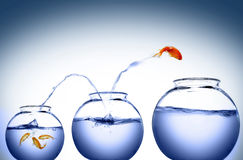 Goldfish jump stock illustration