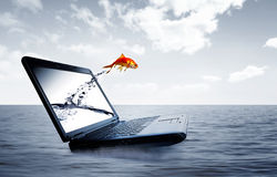 Goldfish jump out of the monitor. At ocean Royalty Free Stock Photos