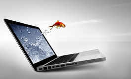 Goldfish jump out of the monitor Royalty Free Stock Photography