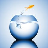 Goldfish jumping. Out of the water vector illustration Stock Photography