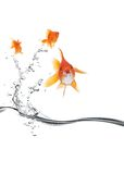 Goldfish jumping away