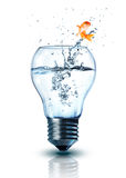 Goldfish jumping out electric bulb. Isolated Stock Photo