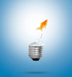 Goldfish jumping out light bulb Royalty Free Stock Images