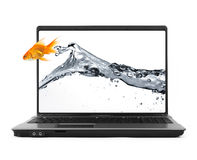 Goldfish jumping out of the notebook Stock Image