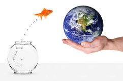 Goldfish jumping into planet earth Royalty Free Stock Photos