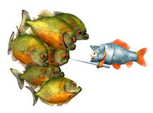 Goldfish knight and piranhas. Isolated on white, 3d with work-path Stock Images