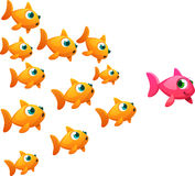 Goldfish lady. A group of goldfish following a goldfish lady Royalty Free Stock Images