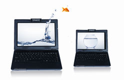 Goldfish and laptop. Goldfish jumping out of the laptop. Collage Stock Photo