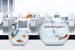 Goldfish leaping to larger aquarium. Picture of goldfish leaping to larger aquarium with opportunity text on the table royalty free stock images