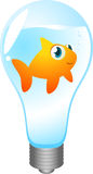 Goldfish lightbulb. Goldfish inside a lightbulb  cartoon Stock Photography