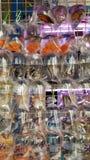 Goldfish Market Stock Photography