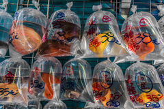 Goldfish market Mong Kok Kowloon Hong Kong Royalty Free Stock Images