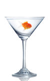 Goldfish in martini glass Royalty Free Stock Images