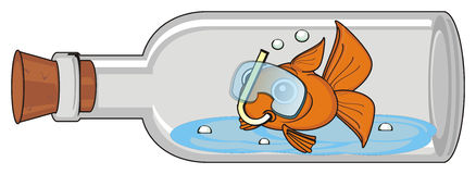 Goldfish in mask. Sits in emty bottle with cork Stock Photo
