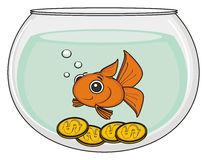 Goldfish with money Royalty Free Stock Photography