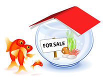 Goldfish new house Royalty Free Stock Images