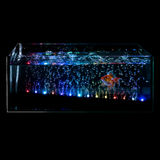 Goldfish in a night illuminated aquarium Royalty Free Stock Photography