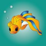 Goldfish performing dreams come true. Catch your goldfish and she will perform your dreams come true Stock Photos