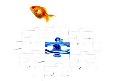 Goldfish puzzle. Goldfish jumping out from the puzzle Stock Image