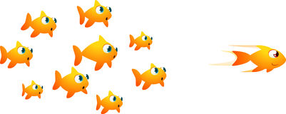 Goldfish racing. With one winner up front.  cartoon illustration Royalty Free Stock Image