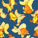 Goldfish, seamless pattern Royalty Free Stock Images