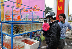 Goldfish Seller Royalty Free Stock Photography