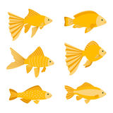 Goldfish set isolated on white background. Yellow gold fishes icons vector illustration Royalty Free Stock Images