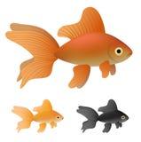 Goldfish set royalty free stock photo