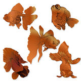 Goldfish - set of vector drawings. Use printed materials, signs, posters, postcards, packaging. Royalty Free Stock Photo