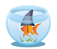 Goldfish Shark in Bowl. A cute little goldfish in a fish bowl wearing a shark fin to scare predators away. Editable vector illustration Royalty Free Stock Photos