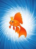 Goldfish on shine blue Royalty Free Stock Photo