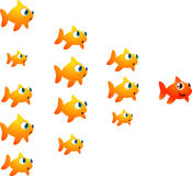 Goldfish shoal orange leader. With a shoal of twelve fish following its orange fish leader  illustration. All excited and happy to go on an adventure Royalty Free Stock Images