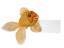Goldfish with a sign Royalty Free Stock Image