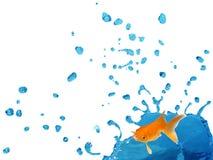 Goldfish Splashing on Bule Liquid. Isolated blue liquid splashing and falling in the air stock images