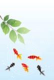 Goldfish summer greeting card Royalty Free Stock Photos