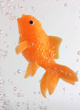 Goldfish swimming with bubbles. Toy goldfish swimming with bubbles royalty free stock photos