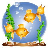 Goldfish Swimming Fishbowl royalty free illustration