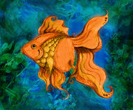 Goldfish Swimming Illustration. A blend of sketch, photo & digital art compiled into this image of a goldfish swimming in the water vector illustration
