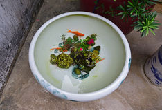 Goldfish swimming in a traditional large Chinese porcelain pot outdoor Royalty Free Stock Photos