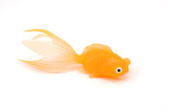 Goldfish Toy. Gold fish toy on a white background Stock Photos