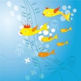Goldfish und halobios Stockbild
